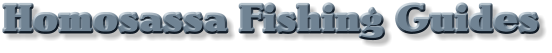 Homosassa fishing guides, Homosassa fishing charters, Homosassa redfish guide, Homosassa trout fishing guide, Homosassa tarpon fishing guide